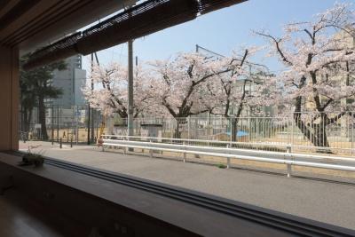 Mitsuwaya 桜