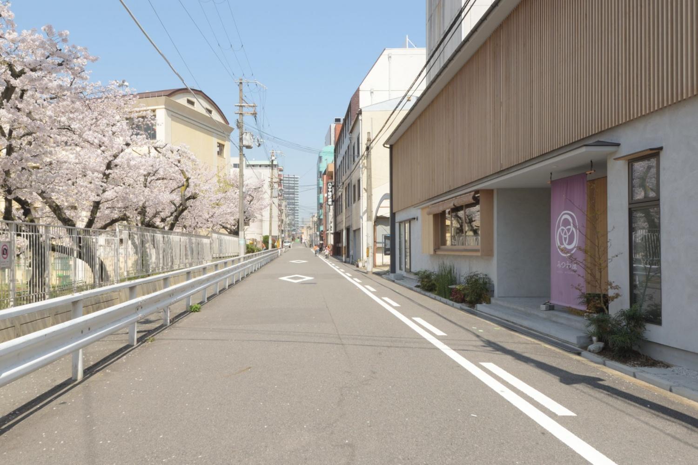 みつわ屋と桜