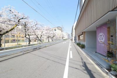 Mitsuwaya 建物と桜