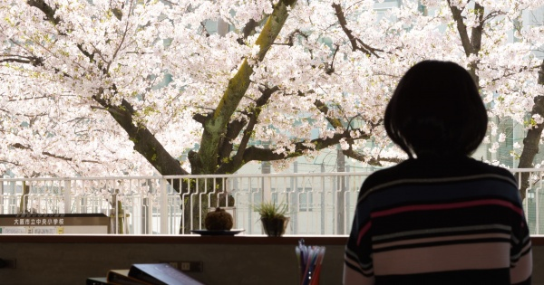 Mitsuwaya コモンスペースからの桜