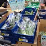 大阪駒川商店街|シェアハウスSEN大阪